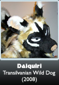 Fursuit Daiquiri